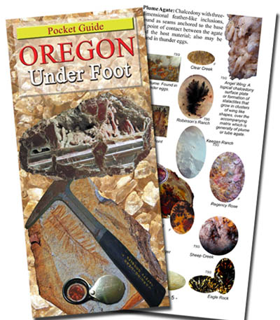If a picture is worth a thousand words, this guide tells it ALL! This comprehensive, Easy-to-use pocket guide shows 60+ of Oregon's geological wonders found on the inland trail.  This best seller is in stock for immediate shipping.  Buy it NOW and SAVE!