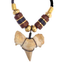 Fossil Moroccan sharks tooth strung on a 17 inch necklace(rubber cord), addorned with striking wooden beads of black and brown with gold tone accent beads.  In Stock available for immediate shipping. Order NOW! $24.00. Select from these plus many other styles to choose from, limited availibility, styles will vary...