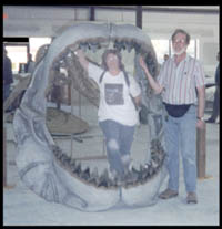 FACETS team of buyers: Kay and Richard (is 6 foot 1 inch tall for scale on the size of this jaw) take a break from their shopping tour for a photo with a reconstructed actual size Carcharodon megalodon shark jaw of genuine fossilized teeth worth thousands of dollars, NOT a plastic copy of a sharks jaw. This could have been a jaw of a 40+ foot shark which is bigger than any sharks of today.